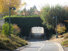 Approaching tunnel on the Old Town Trail in Clovis